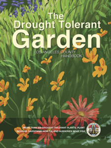 The Drought Tolerant Garden