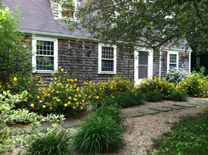 Summer In A Cape Cod Watershed Wise Garden G3 Green Gardens Group
