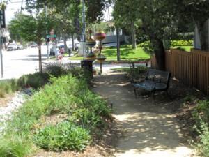 Pasadena Sponge Garden Looks Pretty Good